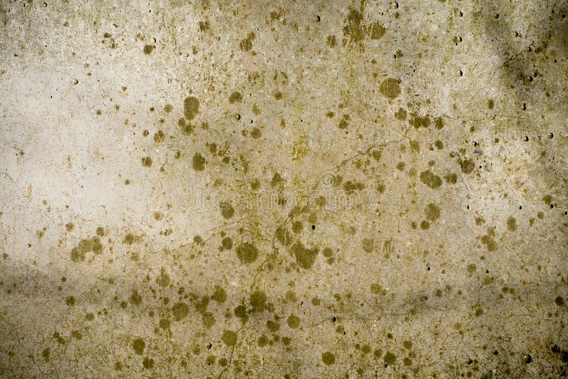 Macchie verdi su una parete grigia con marmo fotografia stock