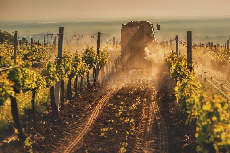 Macchine funzionanti sulla natura del giacimento dell'uva immagini stock libere da diritti