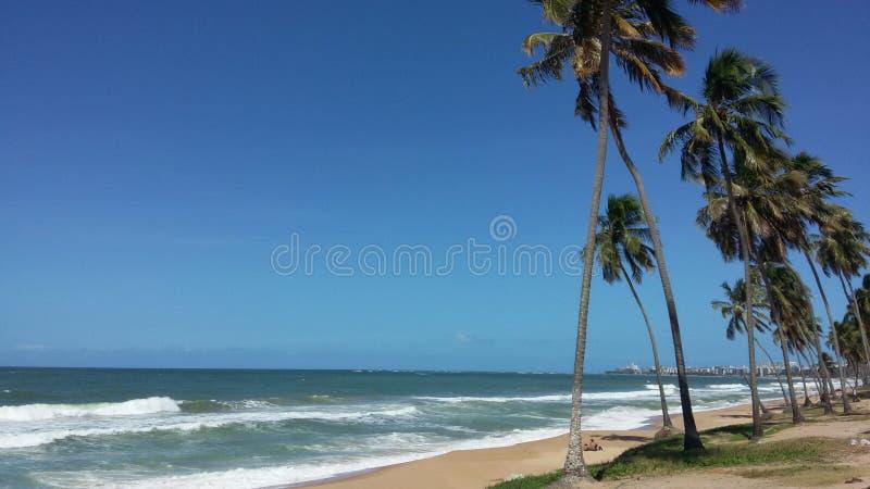 Maceio-AL Brasile, il 18 luglio 2017: - spiaggia di Cruz das Almas immagini stock libere da diritti