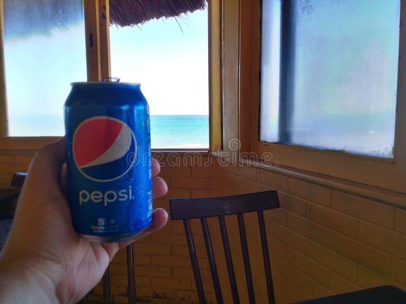 Maceio, AL, Brasilien - 19. Mai 2019 - Hand, die eine Dose von Pepsi hält stockbild