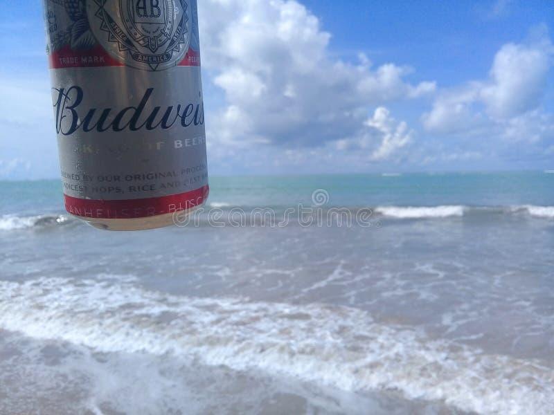 MACEIO, AL BRAZYLIA, Maj, - 12, 2019: Budweiser zimny piwo, piękny morze za i niebo i fotografia stock