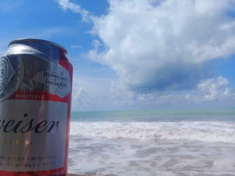 MACEIO, AL BRAZYLIA, Maj, - 12, 2019: Budweiser zimny piwo, pi?kny morze za i niebo i zdjęcie stock