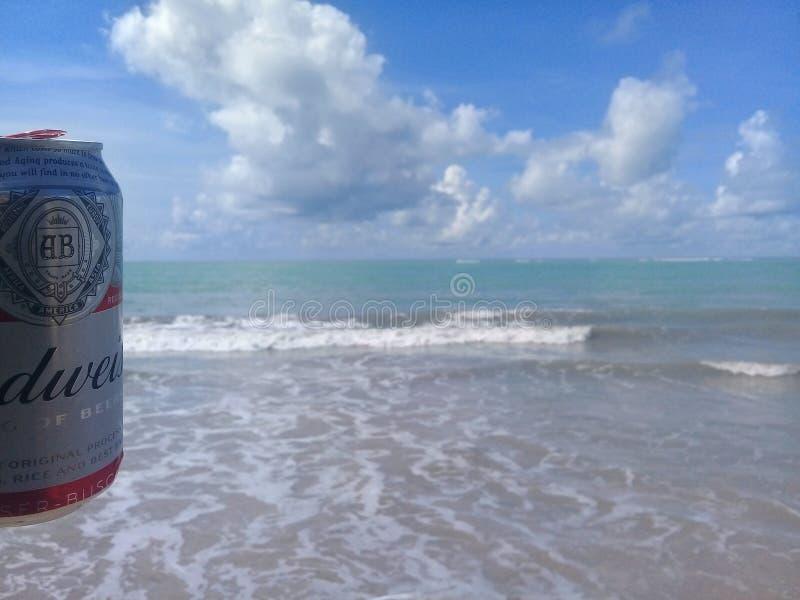 MACEIO, AL BRAZYLIA, Maj, - 12, 2019: Budweiser zimny piwo, pi?kny morze za i niebo i zdjęcie royalty free