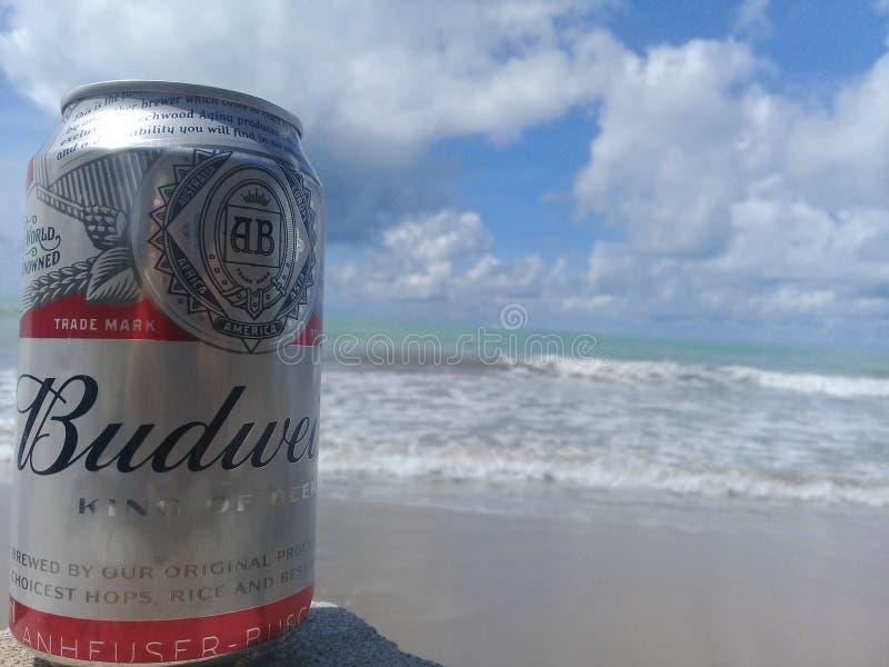 MACEIO, AL BRAZYLIA, Maj, - 12, 2019: Budweiser zimny piwo, pi?kny morze za i niebo i zdjęcia royalty free
