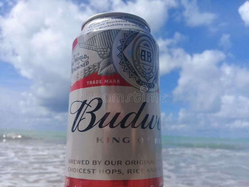 MACEIO, AL BRAZYLIA, Maj, - 12, 2019: Budweiser zimny piwo, pi?kny morze za i niebo i fotografia royalty free
