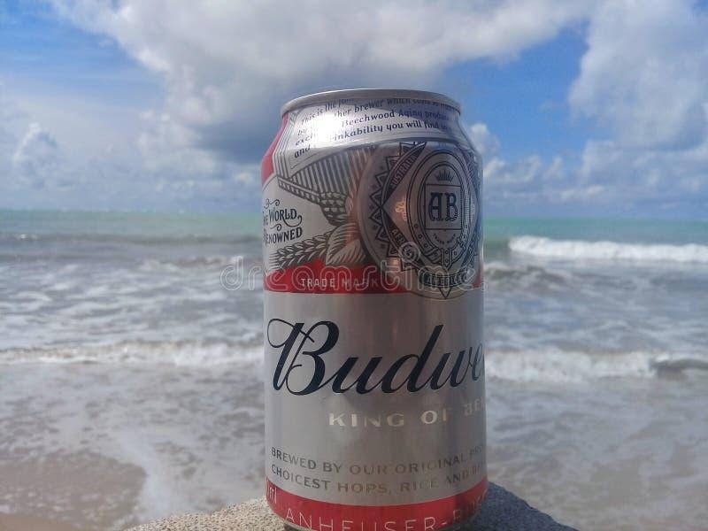 MACEIO, AL BRAZYLIA, Maj, - 12, 2019: Budweiser zimny piwo, pi?kny morze za i niebo i obrazy royalty free