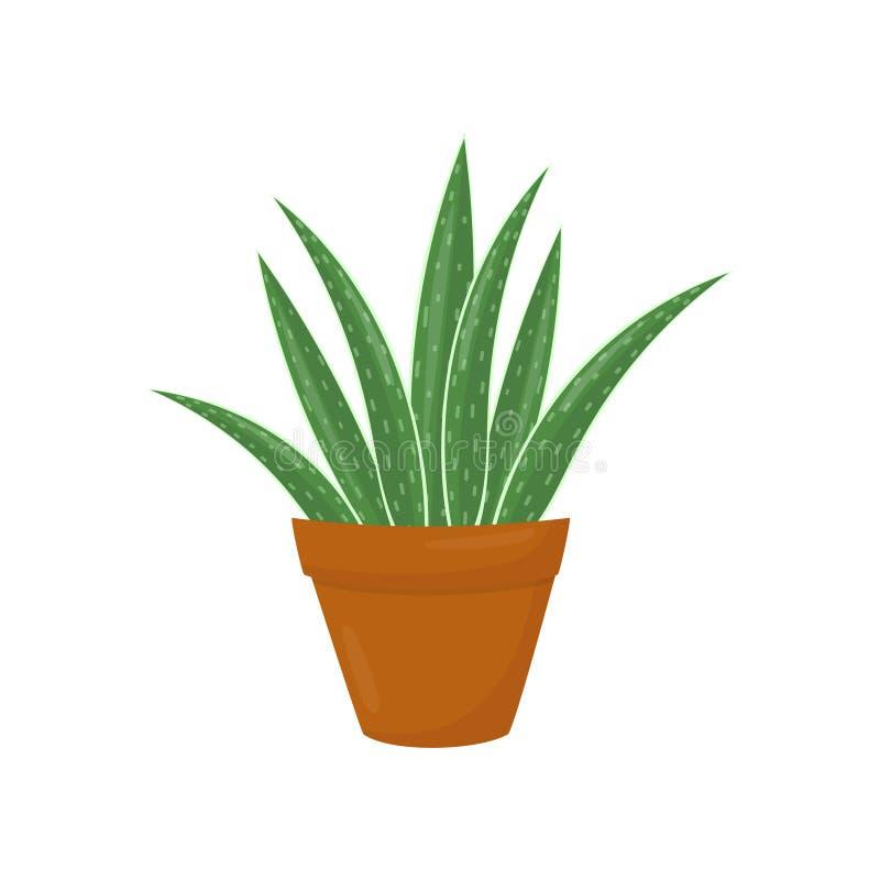 Maceta de Brown con el áloe Vera Planta médica verde Houseplant para el interior Elemento plano del vector para la decoración cas ilustración del vector