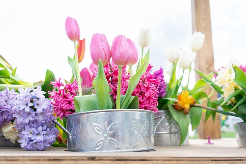 Macetas de la lata con un arreglo floral de tulipanes y de otras variedades de la flor en los troncos del rosa, blancos, amarillo fotografía de archivo libre de regalías