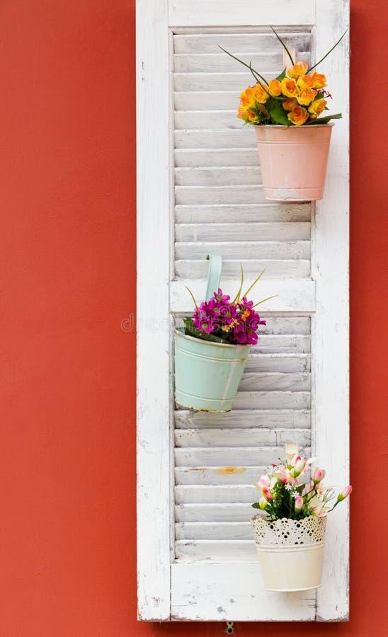 Macetas en la ventana de madera blanca en una pared anaranjada imágenes de archivo libres de regalías