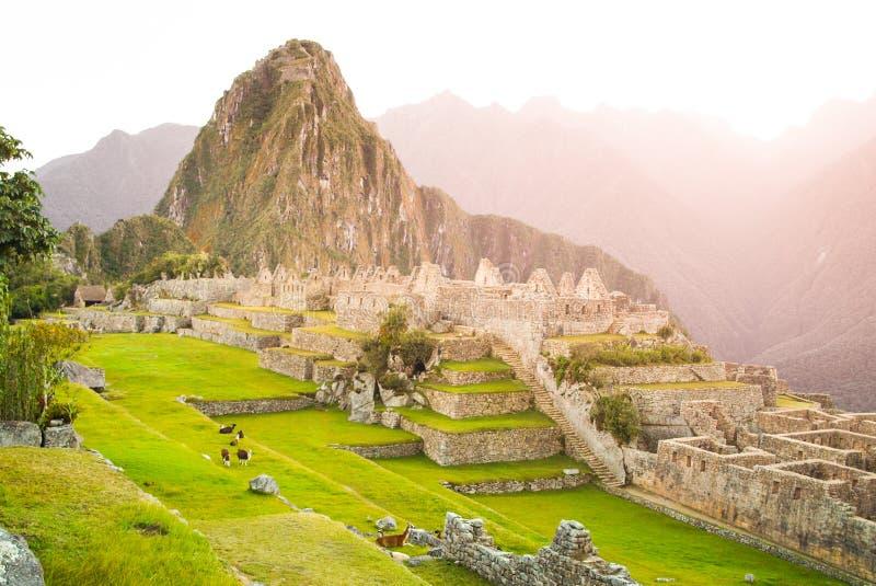 Mach Picchu, Przegrany miasto Incas Peru zdjęcie stock
