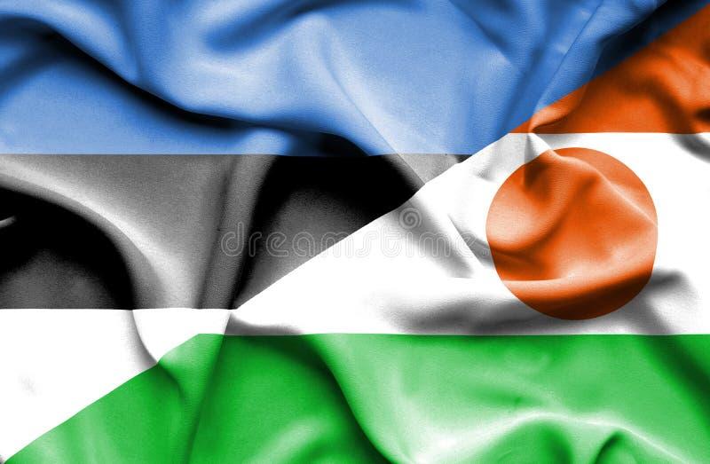 Machać flagę Niger i Estonia zdjęcie royalty free