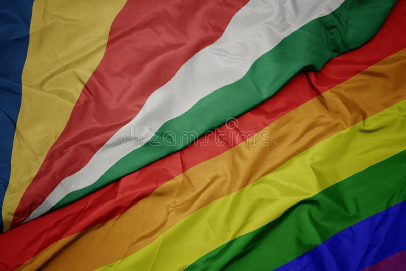 machać kolorową homoseksualną tęczy flagę i flagę państowową Seychelles fotografia stock