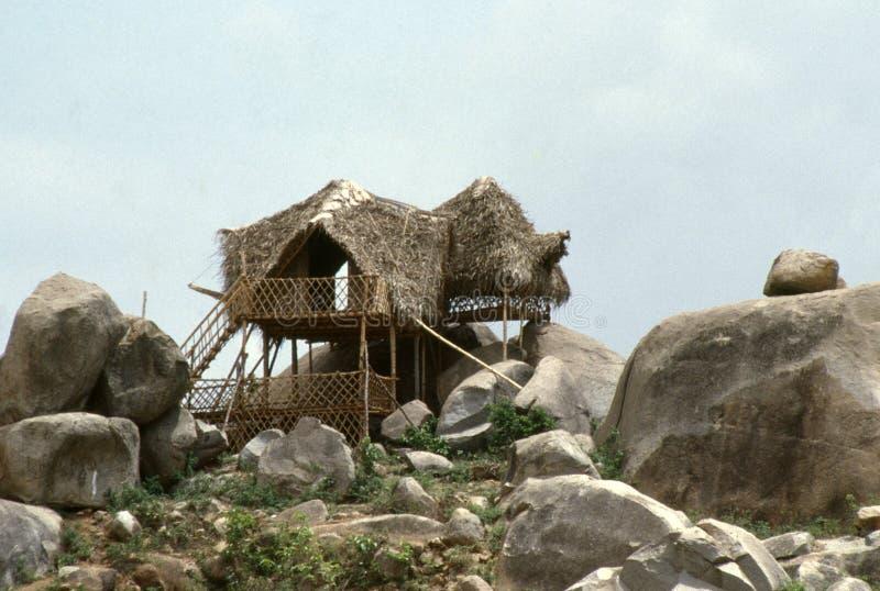 Machaan, la caccia ai cacciatori e la vista alle giungle in India, Asia fotografie stock libere da diritti