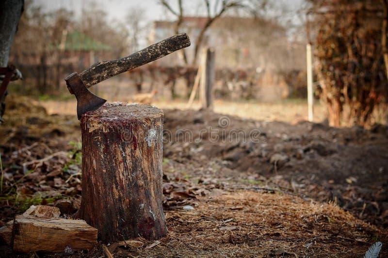 Machado em um coto de madeira velho foto de stock
