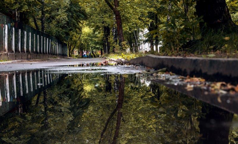 Machen Sie auf der Allee mit Reflexion von Herbstbäumen matschig lizenzfreie stockfotografie
