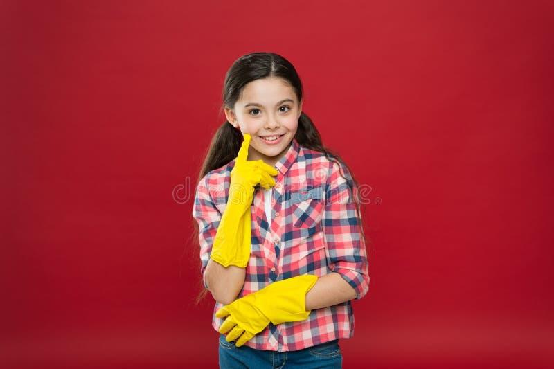 Machen Sie es einfach Sauberkeit Sauberes Haus Aufgaben der Haushaltsführung Federreinigung Hausreinigung lizenzfreie stockfotografie