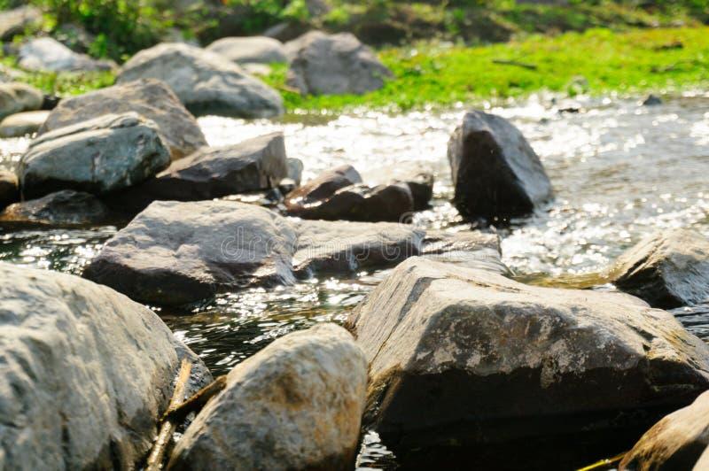 Machen Sie ringsum Felsen auf einem Riverbank mit Gras im Hintergrund glatt lizenzfreies stockbild
