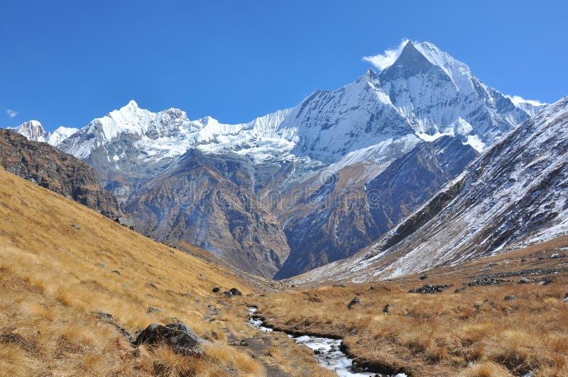 Machhapuchhre,Himalaya Nepal. Machhapuchhre Himalaya, on the way to Annapurna Basing Camp royalty free stock images