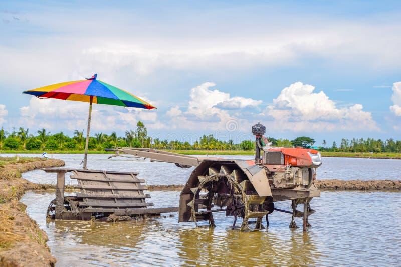 Machine de charrue - tracteur de marche sur le gisement de riz pour la charrue de travail, charrue images stock