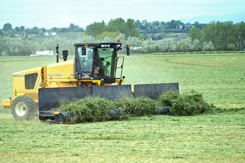 A machine Raking Alfalfa stock images