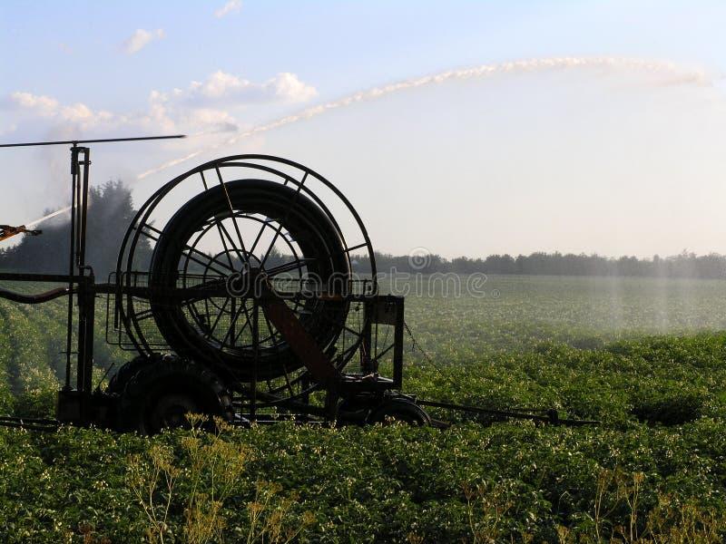 Machine watering field stock photo
