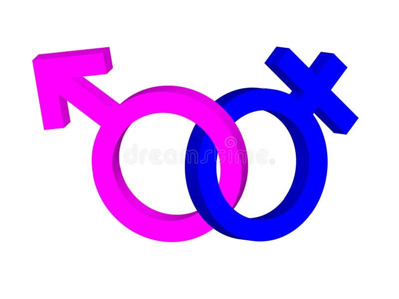 Macho & fêmea ilustração stock