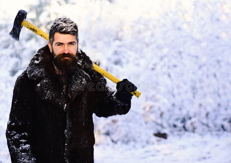 Macho with beard and mustache holds yellow ax. Frozen woodsman concept. Man in fur coat in the forest with axe on shoulder. lumberjack concept. lumberjack man stock photo
