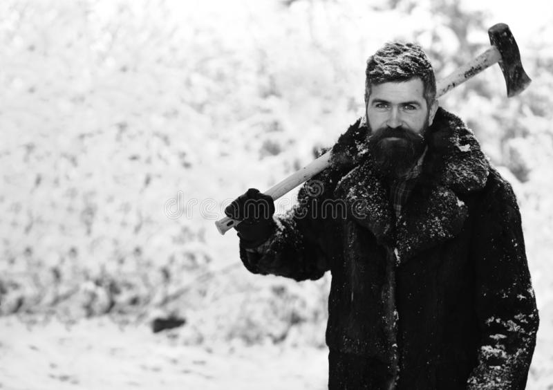 Macho with beard and mustache holds yellow ax. Frozen woodsman concept. Man in fur coat in the forest with axe on shoulder. lumberjack concept. lumberjack man royalty free stock images