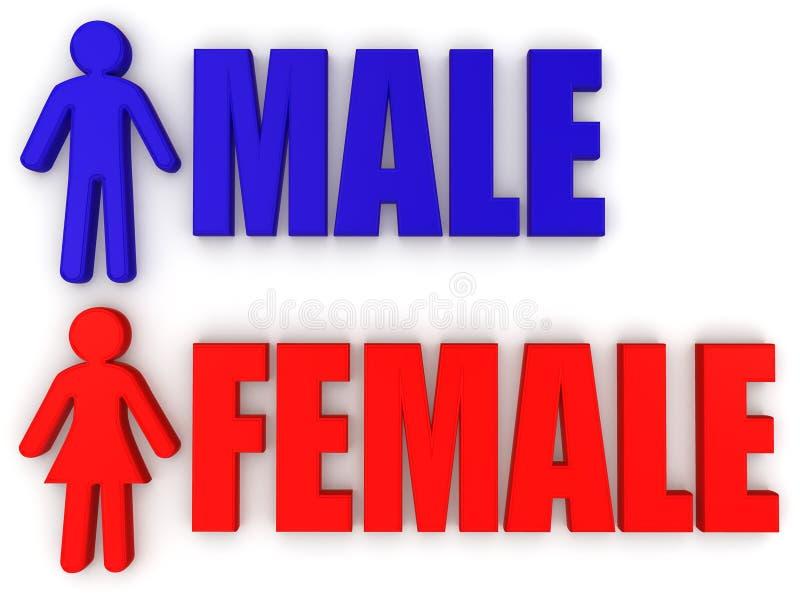 Macho e fêmea. Sinais ilustração royalty free