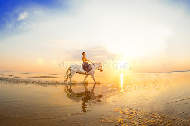 Macho man and horse on the background of sky and water. Boy mode. L, cowboy on horseback on the beach by the sea at sunset. Men, backlit in sunshine. A positive stock photo