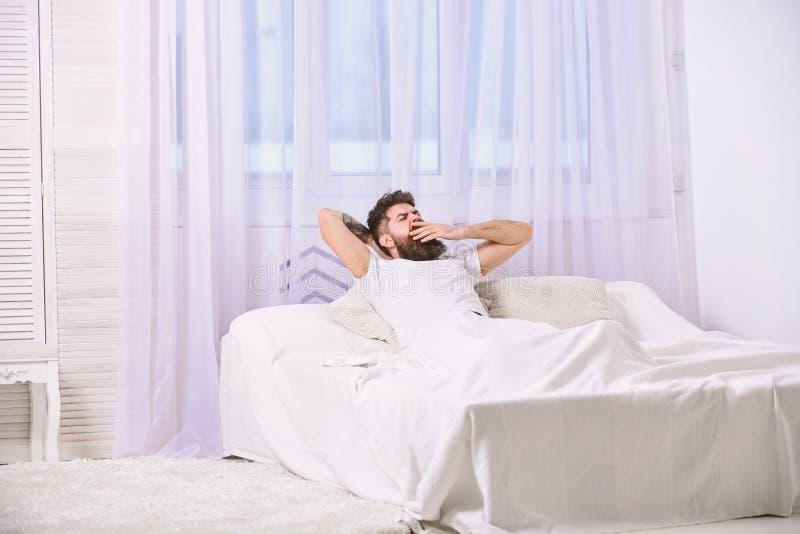 Macho met de handen van de baardgreep achter hoofd, het ontspannen Mens die in overhemd op bed, witte gordijnen op achtergrond le royalty-vrije stock afbeeldingen