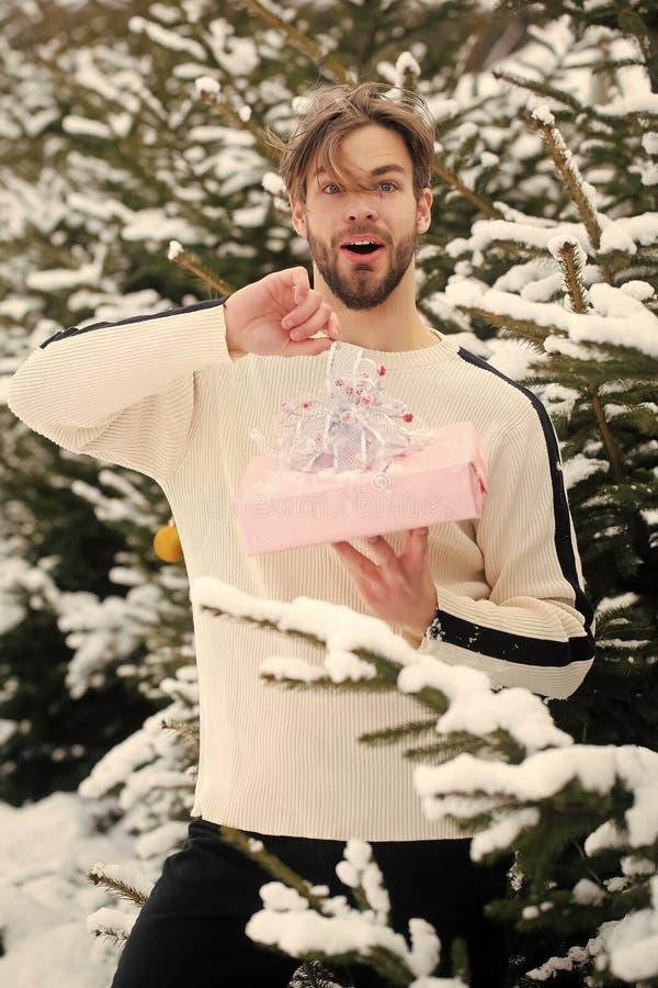 Macho surpreendido na madeira da neve imagem de stock
