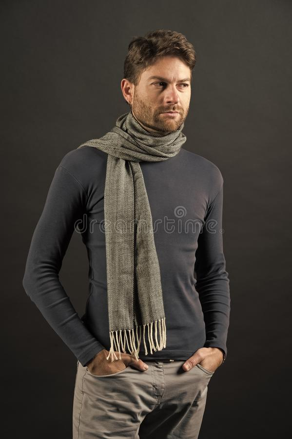 Macho in sweater, scarf with hands in pockets. Man with beard on unshaven face on grey background. Fashion, accessory, style. Barber salon, barbershop stock photos