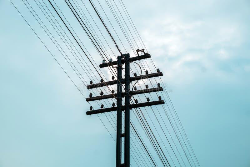 Machts elektrische pool gevoerde overvloed stock afbeelding