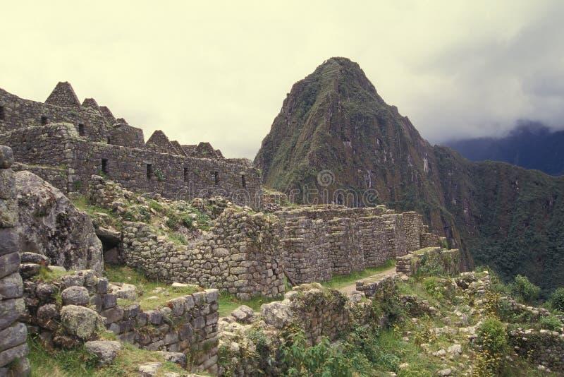 machu秘鲁picchu居住区 库存图片