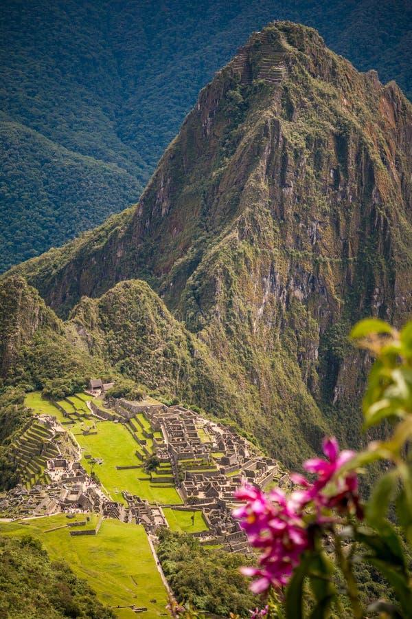 Machu Picchu как увидено от горы Machu Micchu стоковые фотографии rf