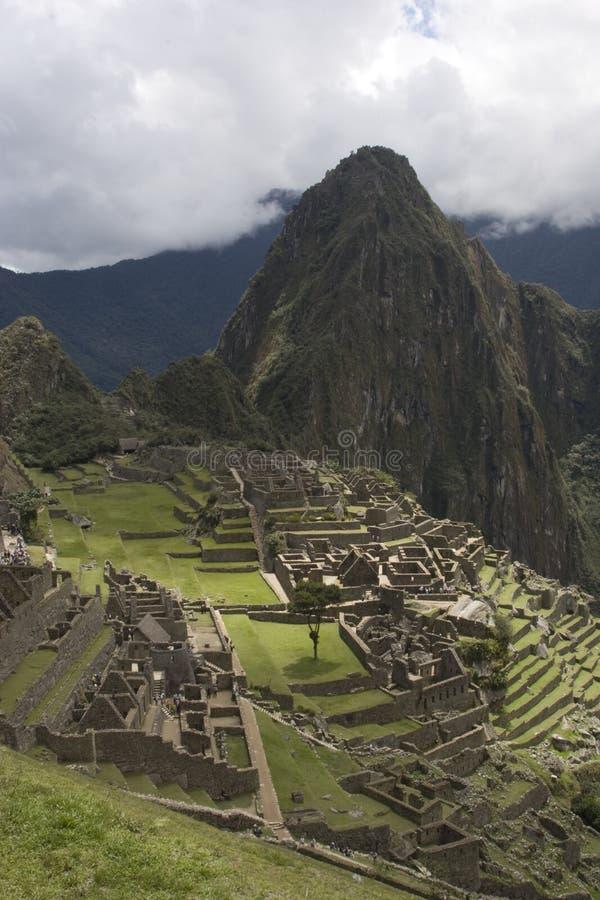 Machu Picchu. Vertical landscape of Machu Picchu with Waynu Picchu in background stock photos