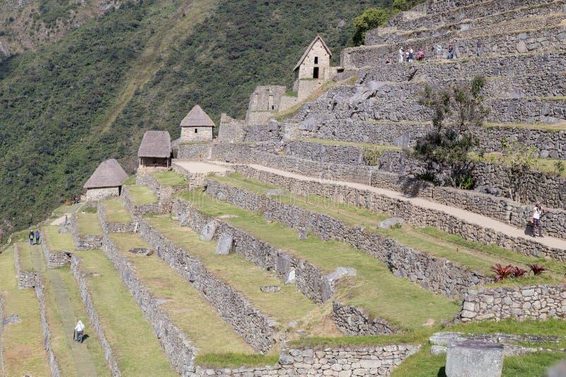 Machu Picchu, Aguas Calientes/Peru - circa Juni 2015: Terrasser i Machu Picchu den sakrala borttappade staden av Incas i Peru arkivfoton