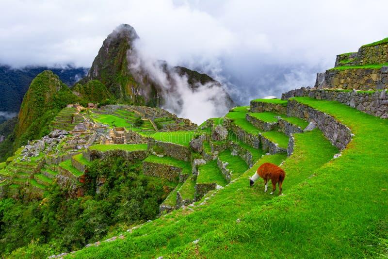 Machu Picchu, Cusco, Pérou : Aperçu de la ville perdue d'Inca Machu Picchu avec la crête de Wayna Picchu photographie stock
