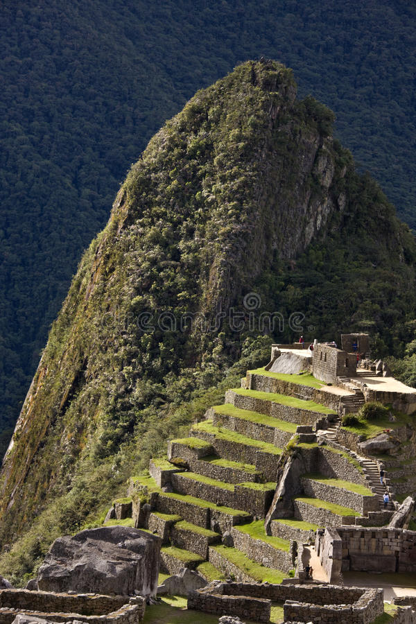 Download Machu Picchu in Peru stock photo. Image of sightseeing - 16214744