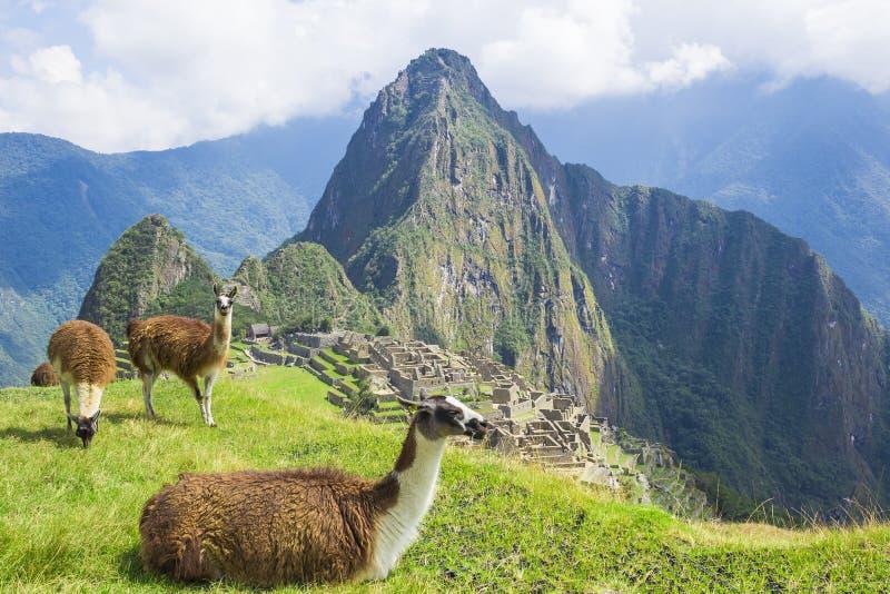 Machu Picchu, Peru arkivbild