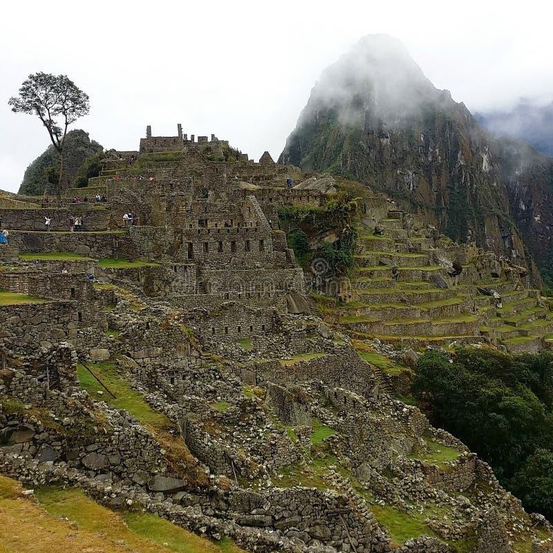 Machu Picchu, Peru royalty-vrije stock foto's