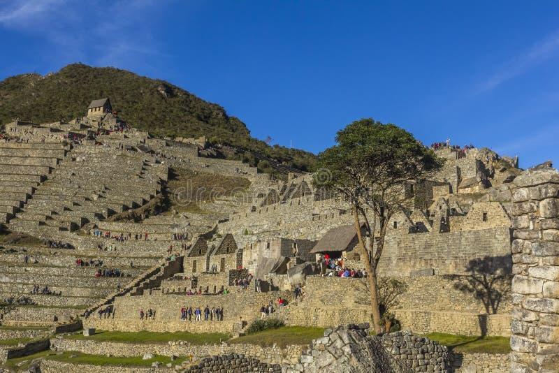 Machu Picchu ruine Cuzco Pérou images libres de droits
