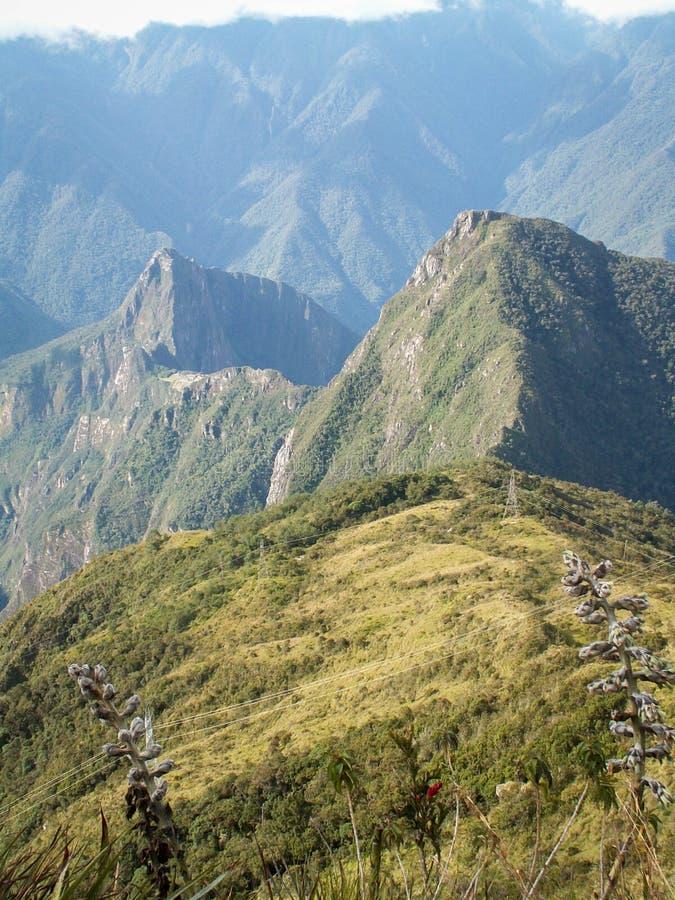 Machu Picchu van erachter royalty-vrije stock foto's