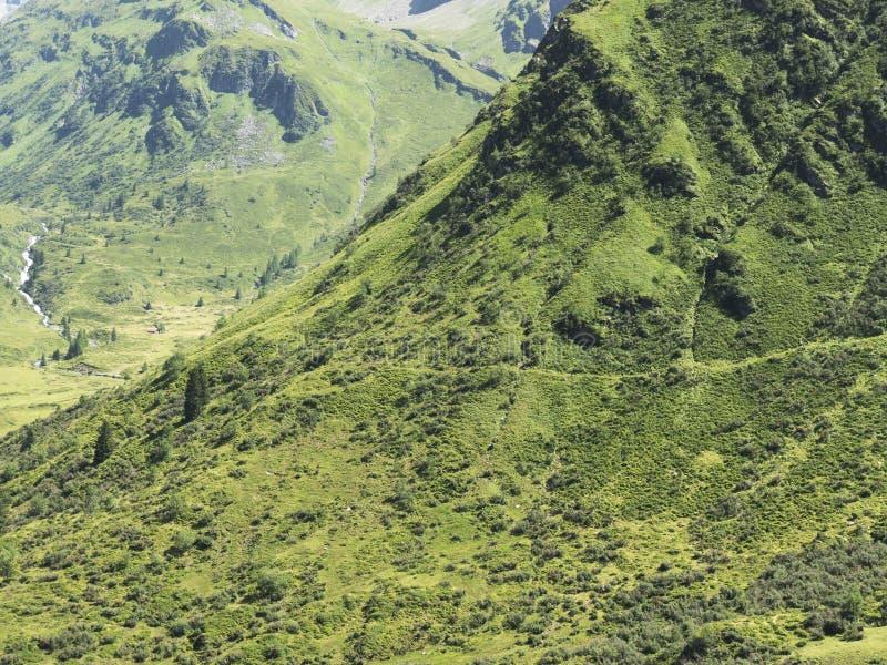 Macizo alpino, barranco alpino hermoso en Austria Valle alpino de Gastein en verano foto de archivo libre de regalías
