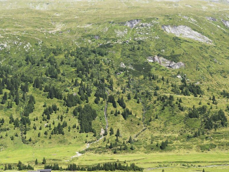 Macizo alpino, barranco alpino hermoso en Austria Valle alpino de Gastein en verano fotos de archivo