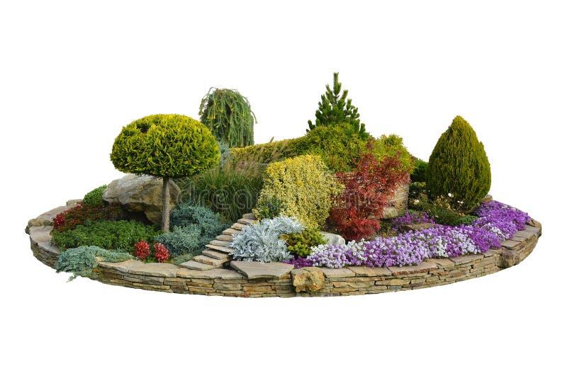 Macizo de flores con los árboles, los arbustos y las flores decorativos en el summe foto de archivo libre de regalías
