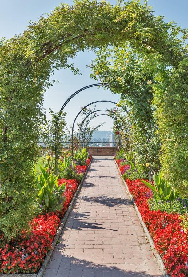 Macizo de flores del parque de Schlossberg en Graz, Austria imagenes de archivo