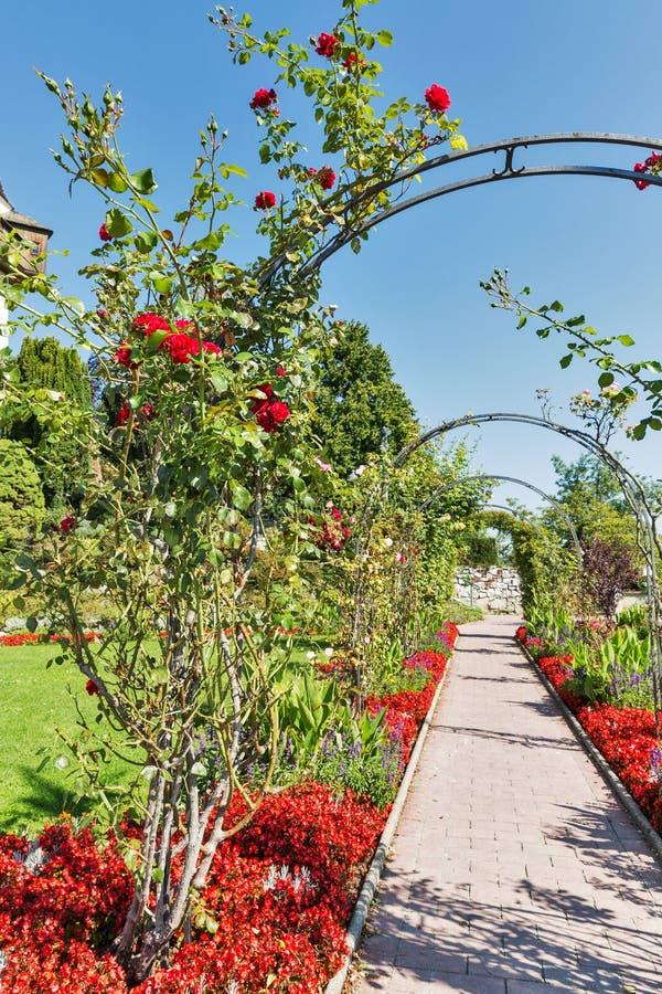 Macizo de flores del parque de Schlossberg en Graz, Austria foto de archivo libre de regalías