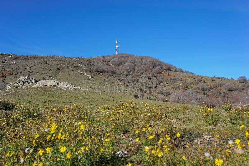 Macizo los Pirineos de Neulos Albera del pico de montaña fotografía de archivo